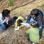 ateliers enfants arbustes et arbres à trévières