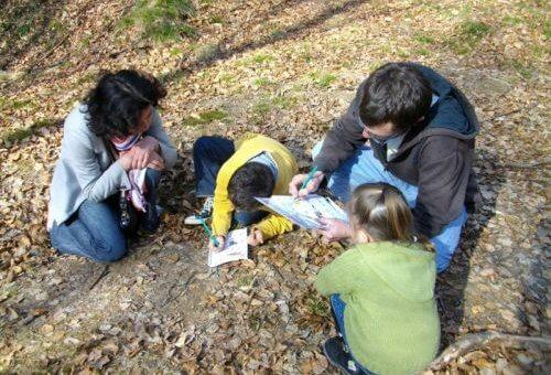 Ateliers enfants «Arbres et Arbustes de nos haies»
